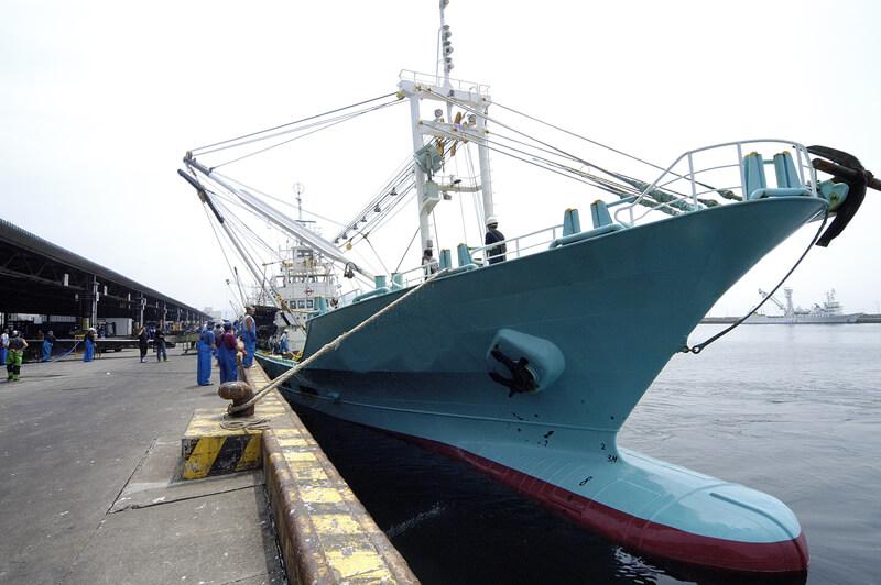 廻船問屋部門_取扱漁船