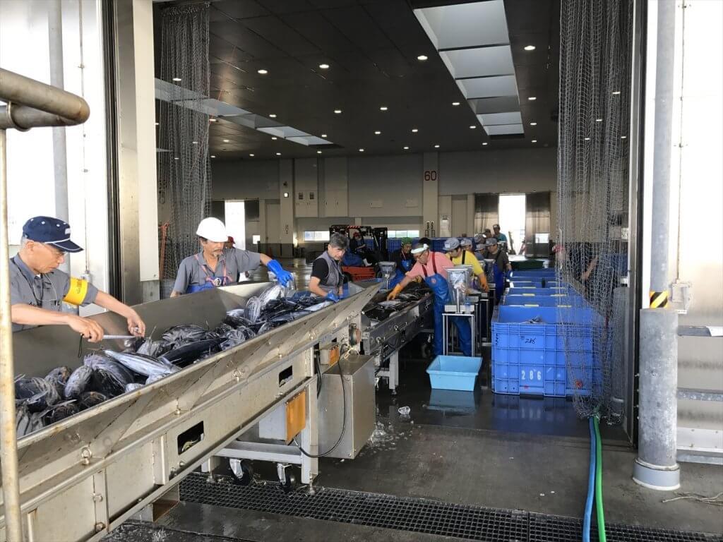 衛生管理施設充実の石巻魚市場